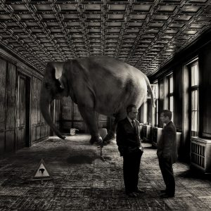 The elephant in the room. Source: https://www.flickr.com/photos/mobilestreetlife/4179063482/in/photostream/